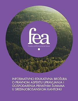 Informative Educational Brochure.jpg