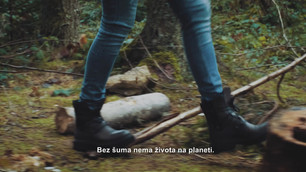 Mita_Drvo_pripada_sumi_BSN4 (1).mp4