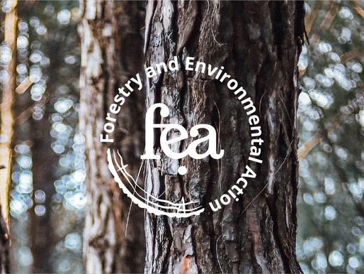 fea rebranding