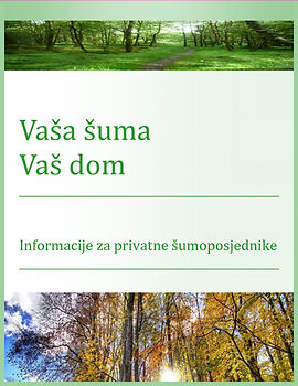 Sustainable Private Forest 01.jpg