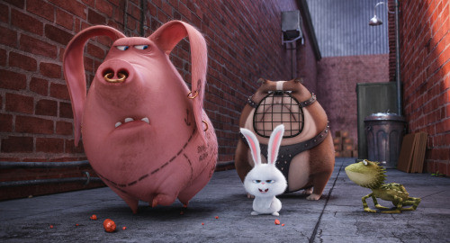 Secret Life of Pets Ride Coming to Universal Hollywood