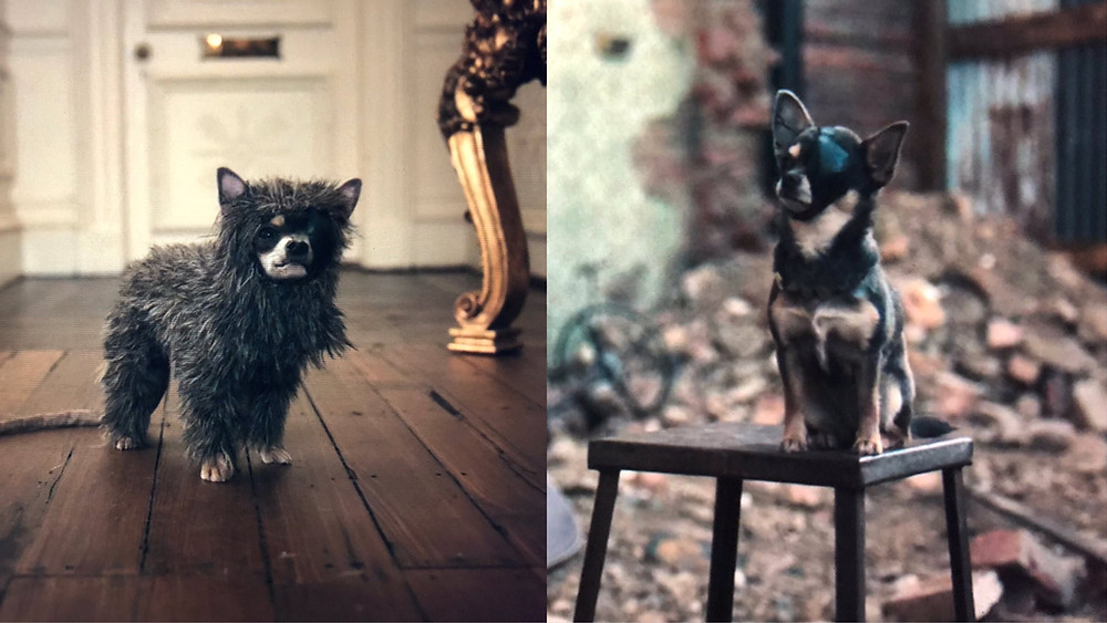 Bluebell the dog as Wink in Cruella c/o Disney