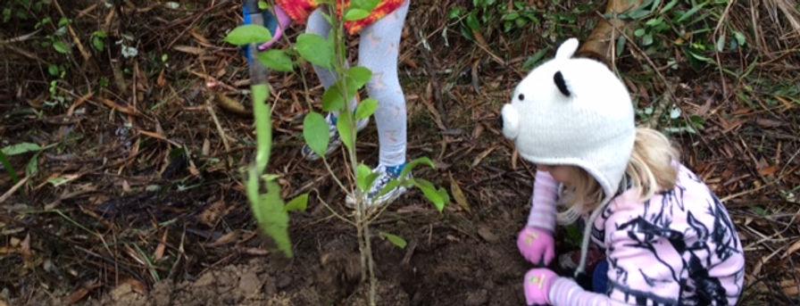 children planting.jpg