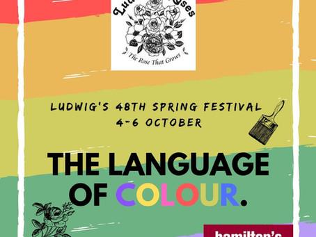 Language of Colour Festival