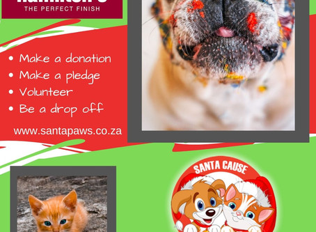 It's That Time Again - Help Santa Paws