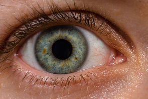 The Eye has rings within the iris whcih we test as the eye zones.