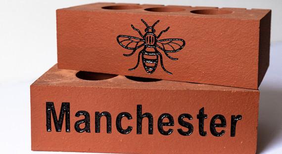 Bee Bricks by BrickCo