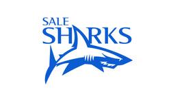 sale-sharks