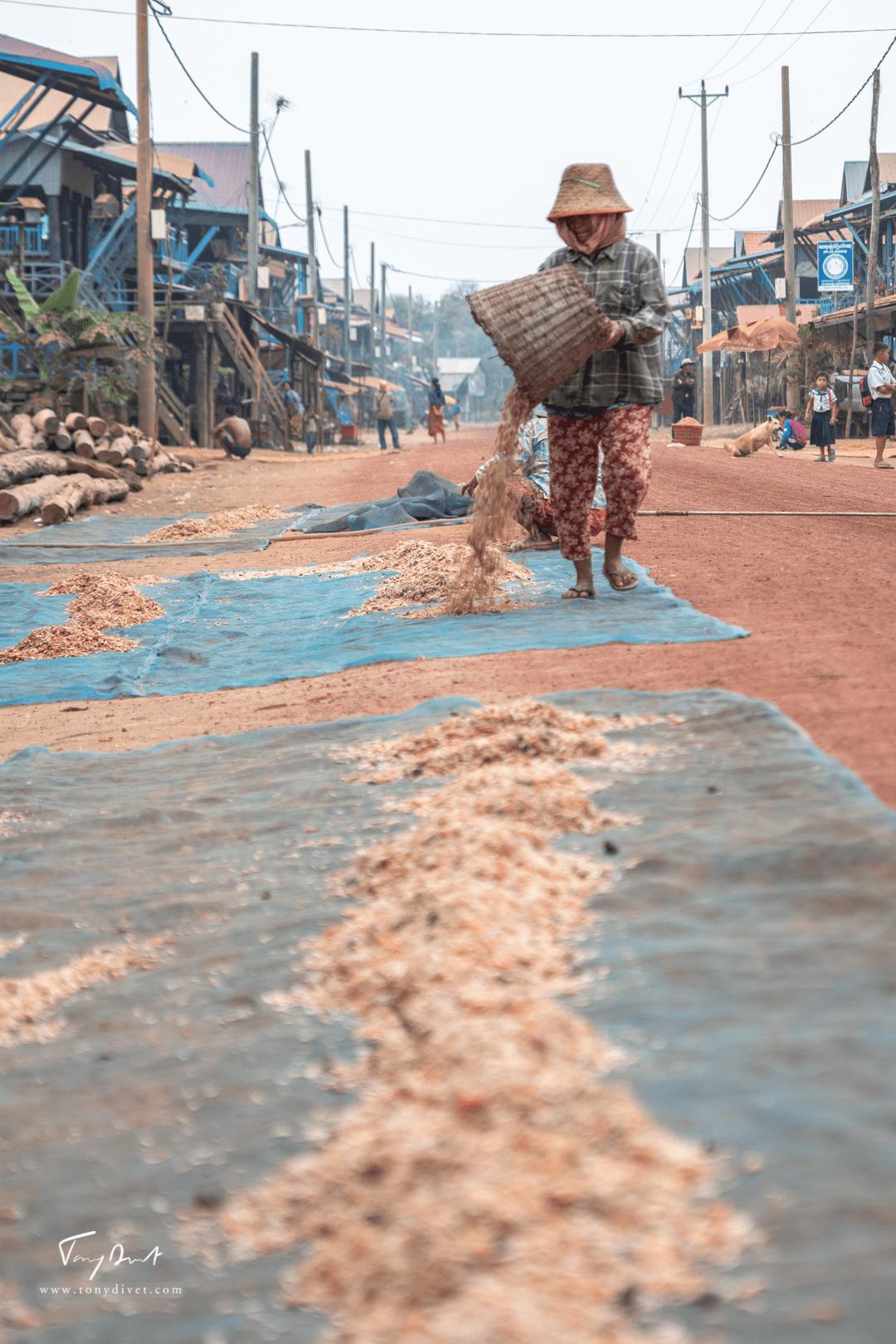 Cambodge-9903