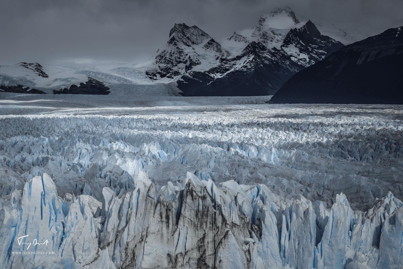 Argentine-1243