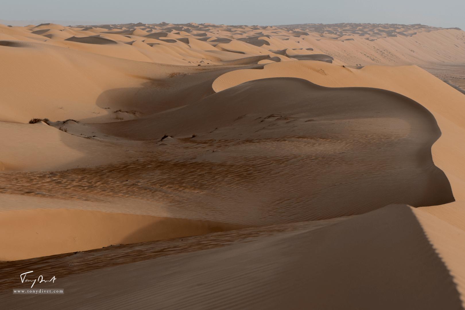 Sultanat d'Oman-8415