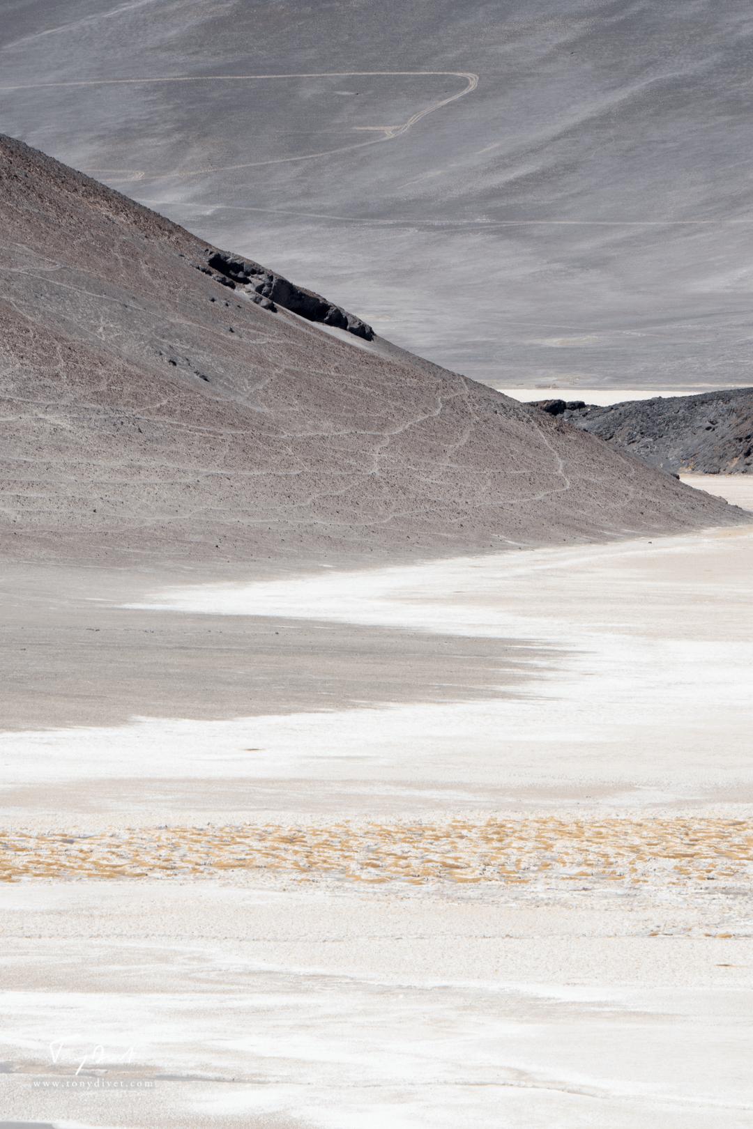 Chili-3626