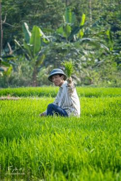 Vietnam-1127