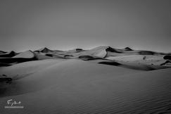 Sultanat d'Oman-8287.png