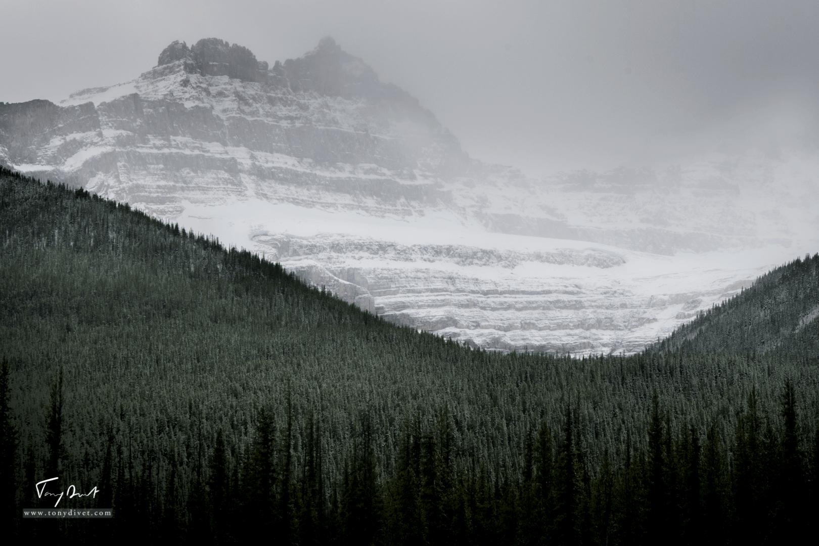 Canada-9680