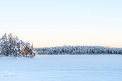 Laponie-3271
