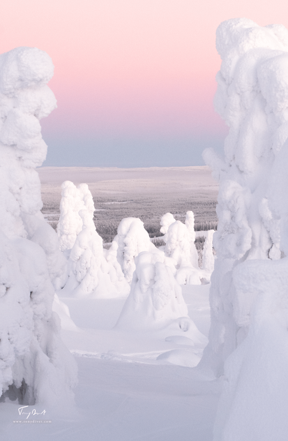 Laponie-4509.png
