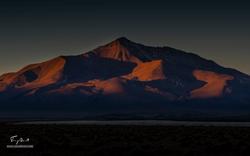 Chili-4473