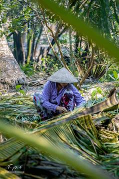 Vietnam-0173.png