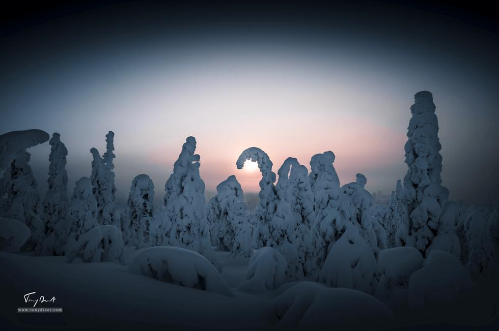 Laponie-3575.png