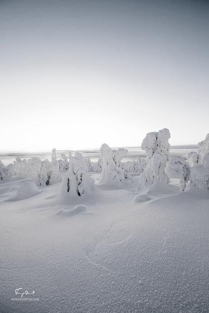 Laponie-3794.png