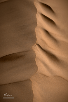 Sultanat d'Oman-8315.png