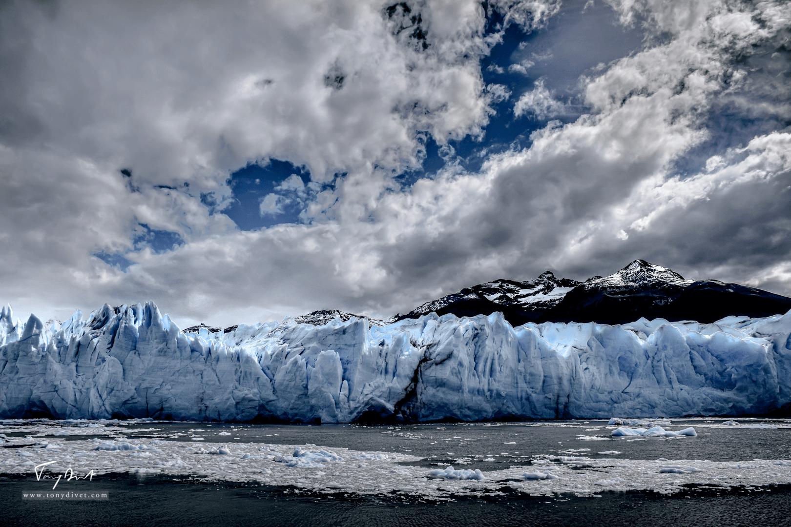 Argentine-1390