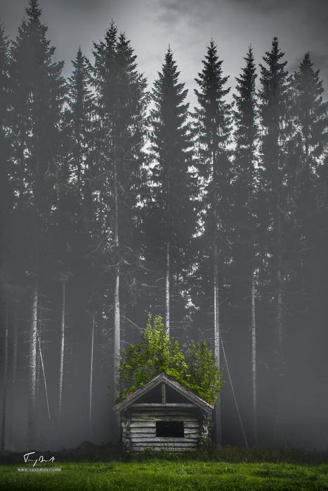 Norvège-0884.png