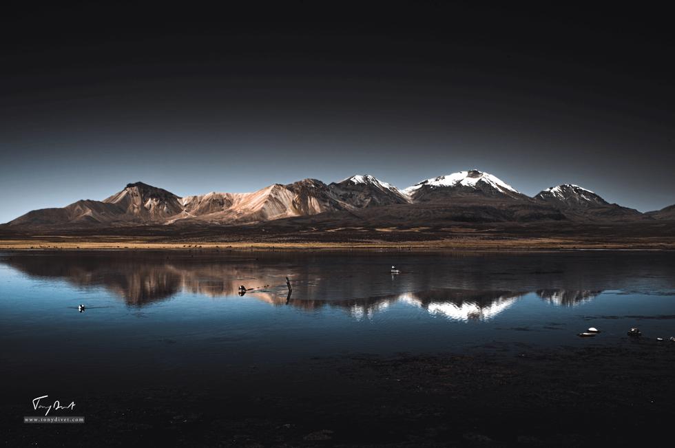 Chili-4770.png