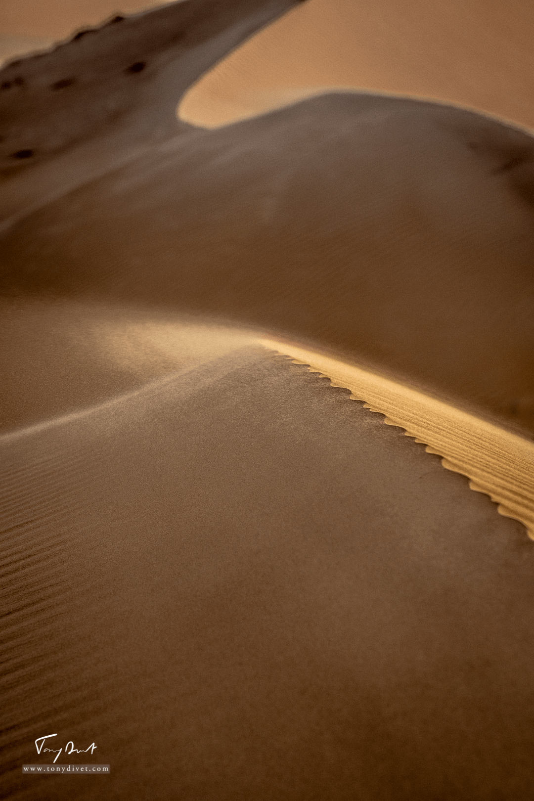 Sultanat d'Oman-8396