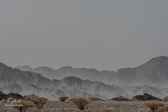 Sultanat d'Oman-6965.png
