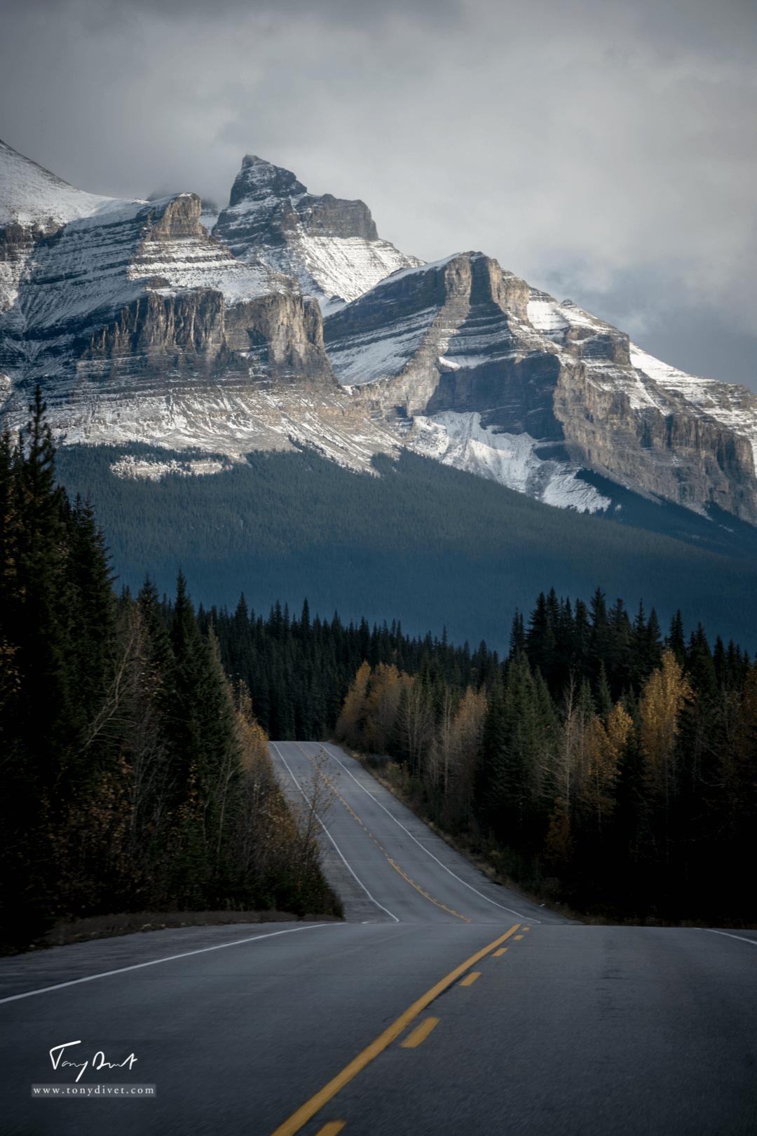 Canada-9806
