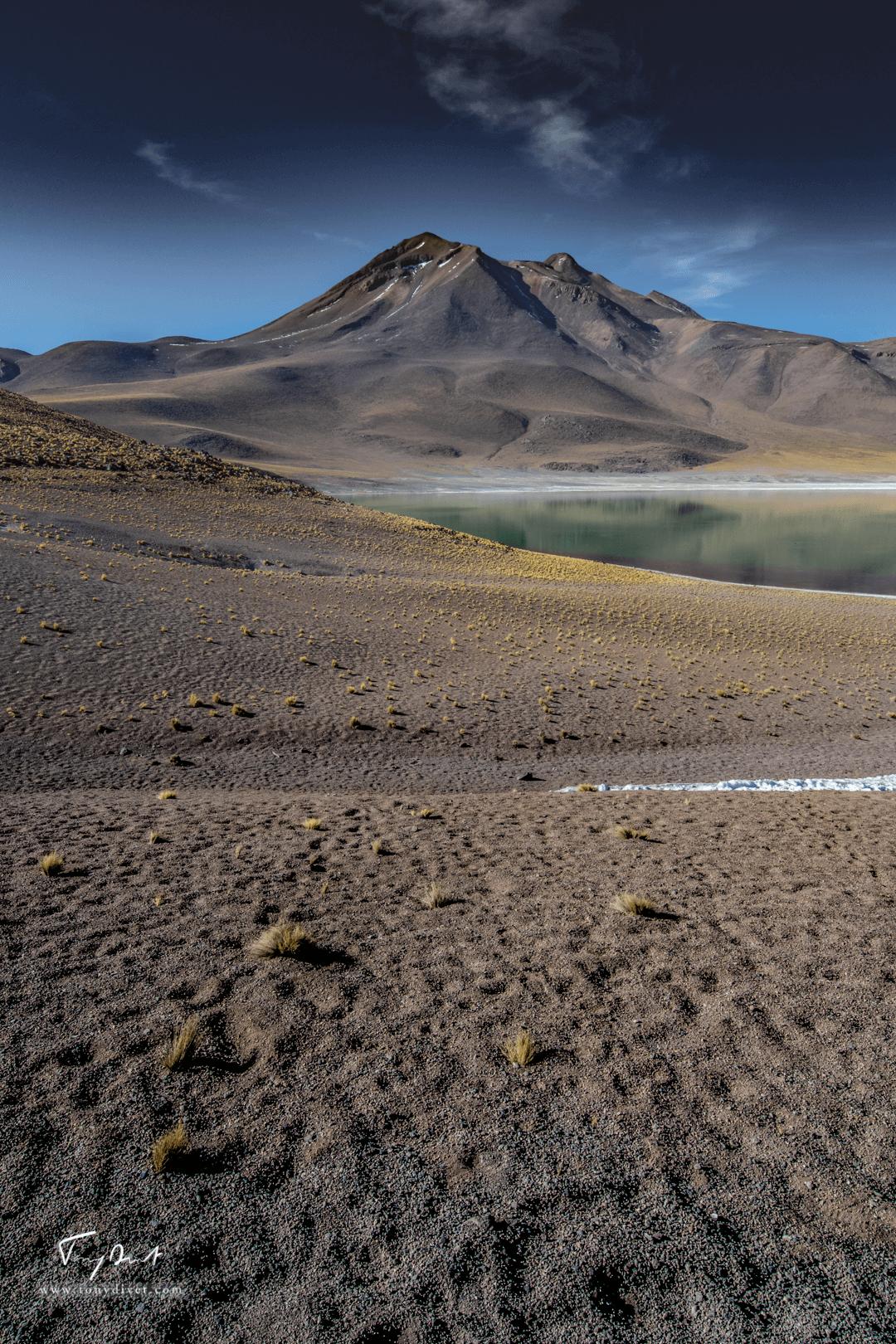 Chili-3524