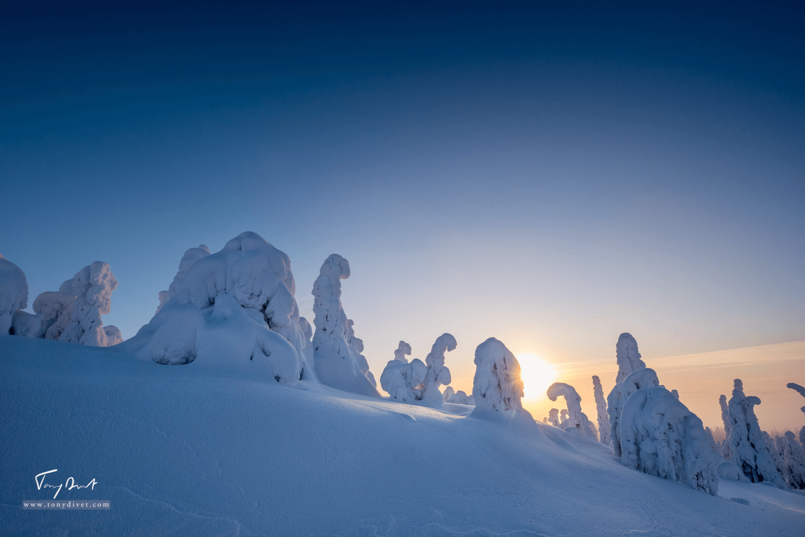 Laponie-3594