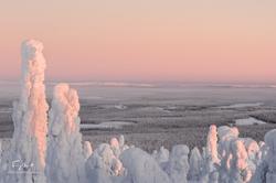 Laponie-4390