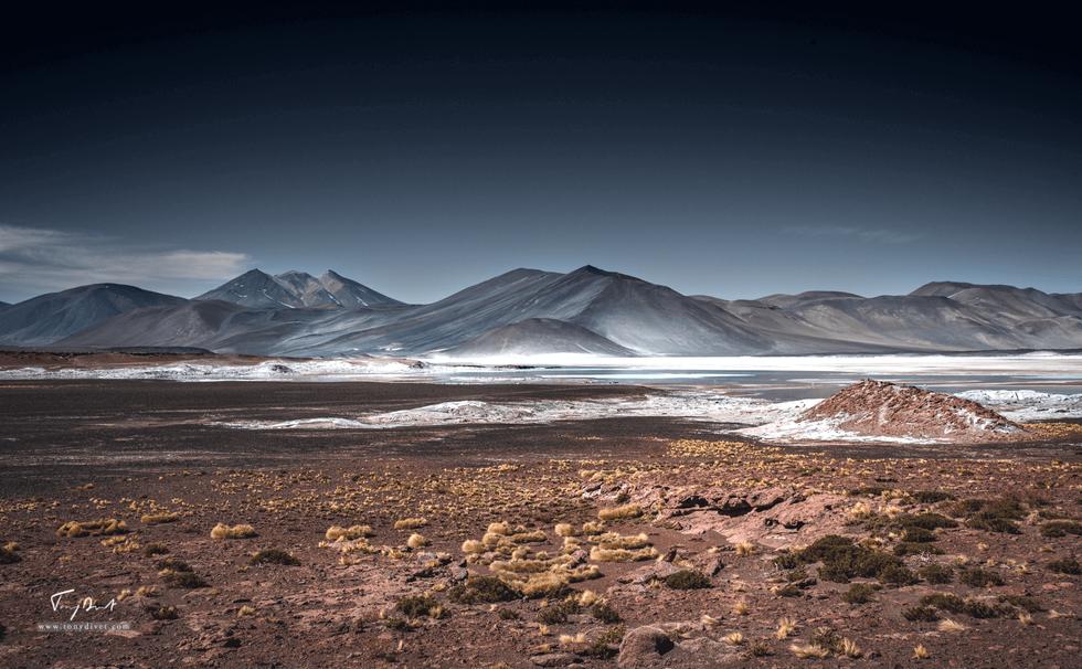 Chili-3568.png