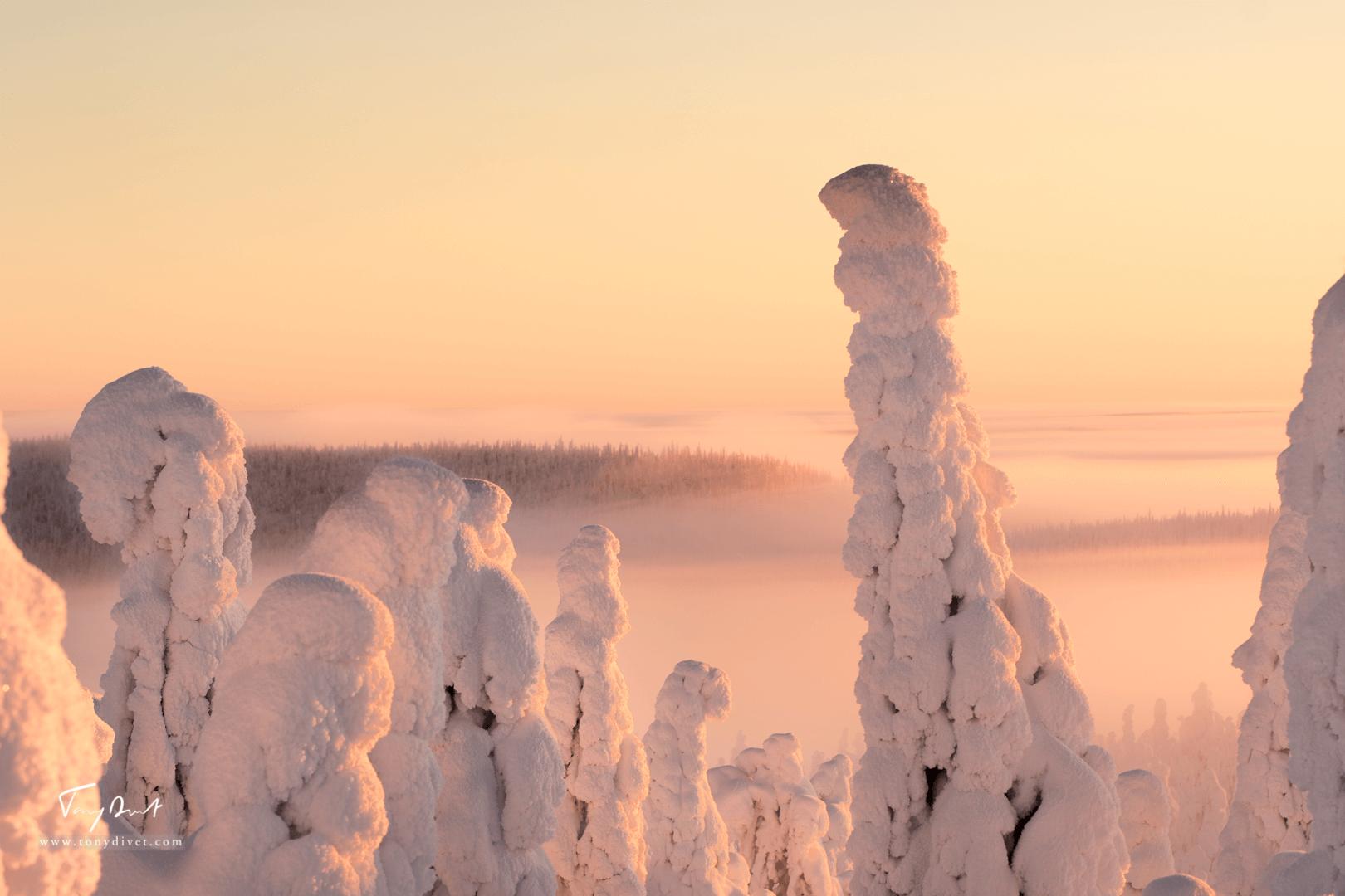 Laponie-4341