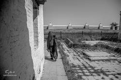 Mongolie-2
