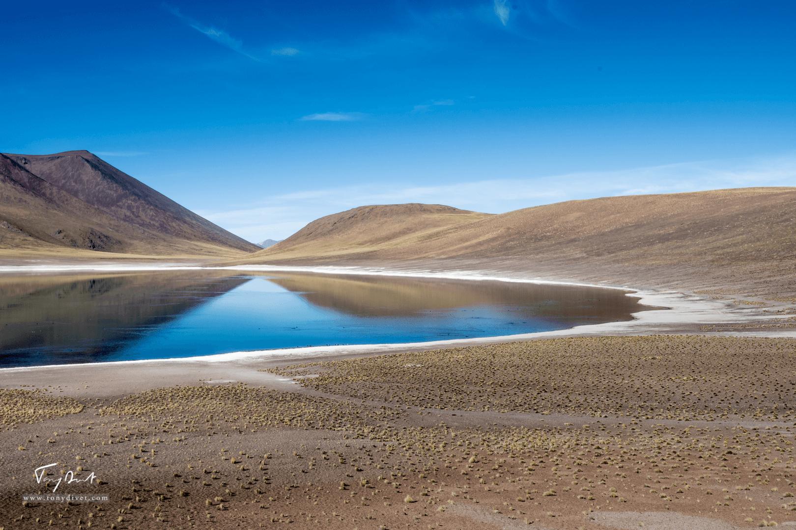 Chili-3522