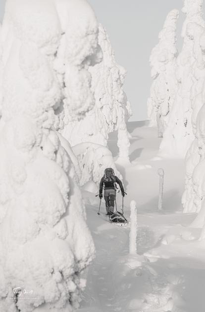 Laponie-4246.png