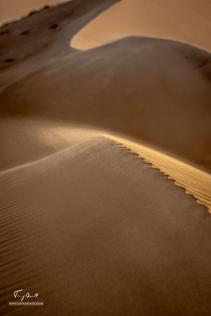 Sultanat d'Oman-8396.png