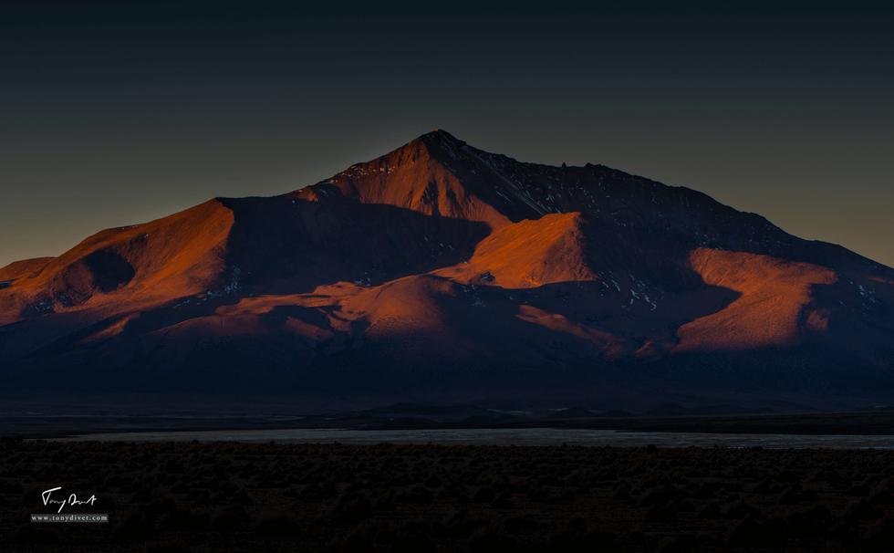 Chili-4473.png