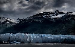 Argentine-1361
