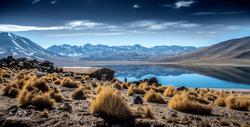 Chili-3539