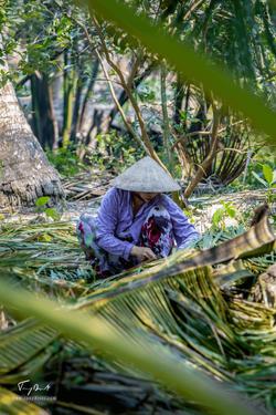 Vietnam-0173