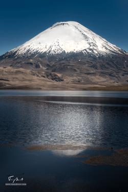 Chili-4775