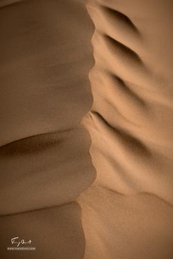 Sultanat d'Oman-8315