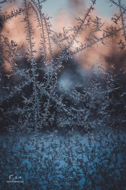Laponie-3305.png
