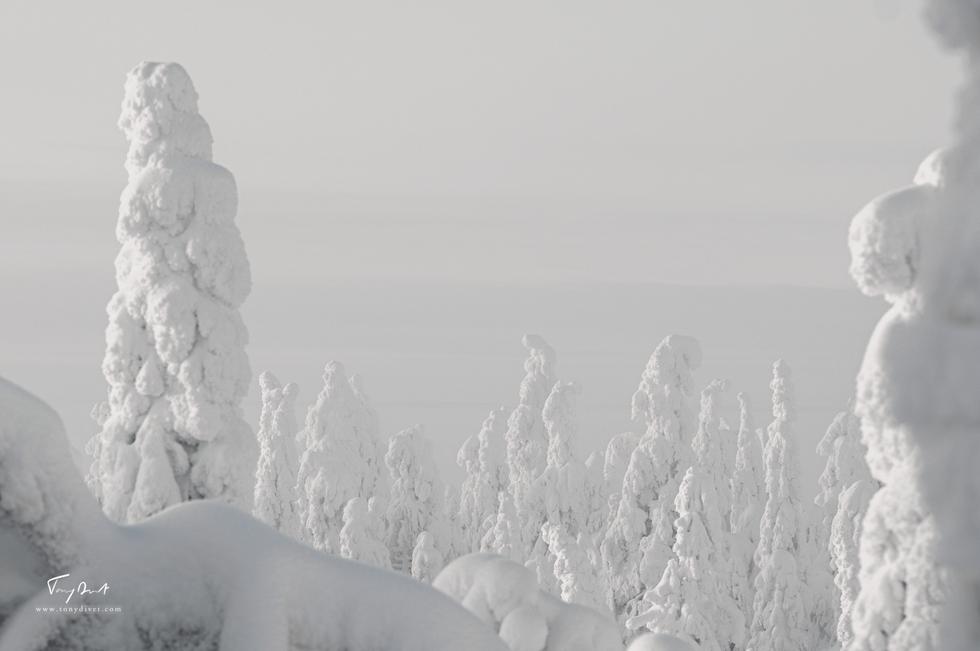 Laponie-4242.png