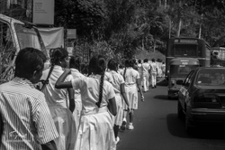 Sri-Lanka-02449